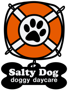 salty-dog-daycare-presale copy